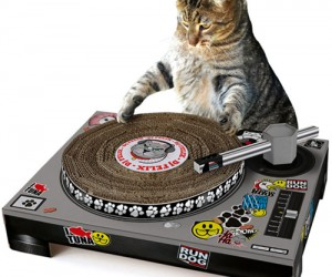 Ever thought your cat would make a great DJ? Well now you can find out with DJ Cat Scratch Turntable, a hilarious addition to your cat's box of toys.