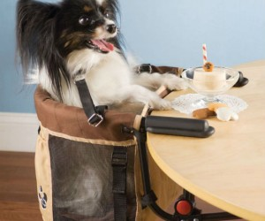 Pet High Chair – This ridiculous product lets your pet sit at the table and be part of family