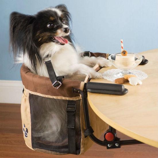 pet high chair