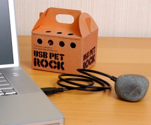 Pet Rock USB – Tired of boring traditional USBs? Why not try the Pet Rock USB still pretty boring but nothing like a traditional USB.