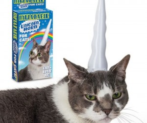 Turn your cat into a beautiful mythical creature with the inflatable unicorn horn for cats – and as you can see from this happy customer's photo your cat will love […]