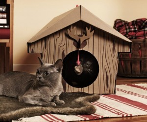 Cat Cabin – Give your kitty the gift of the great outdoors! (Even when they are stuck indoors)