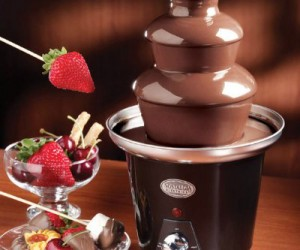 Chocolate Fountain – Mmmmm… smooth flowing chocolate, just think about how good dipping strawberries or bacon in it would be.