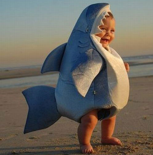 Baby Shark Costume - Shut Up And Take My Money