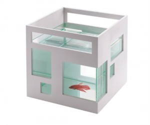 Let your fish live a little with its very own 3 bedroom aquarium apartment.