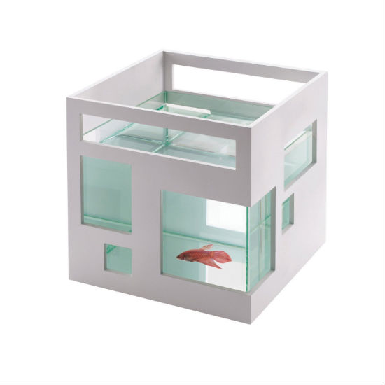 Apartment Aquarium Shut Up And Take My Money
