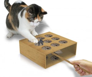 Cat Whack A Mole – Your cat will be a natural at everyone's favorite mole whacking carnival game.