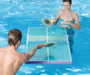 Pool Ping Pong Table – Ping pong is no longer only a land sport.