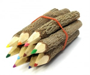 Branch And Twig Colored Pencils – The perfect choice for coloring a beautiful nature scene!