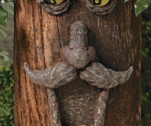 Tree Face Bird Feeder – Give your trees the character they deserve.