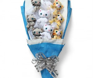 Nobody would want roses when they could have a bouquet full of plush kittens!!!!