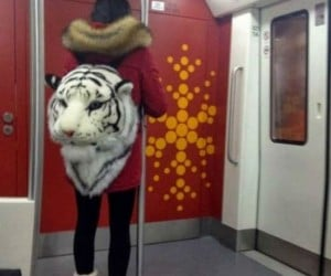 Tiger Head Backpack  – Don't know why you'd need one but it exists.