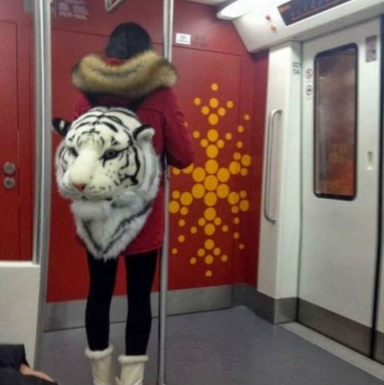 tigerhead backpack