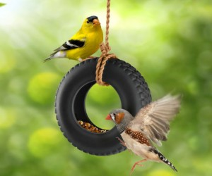 Tire Swing Bird Feeder – Feeding birds has never been this entertaining!