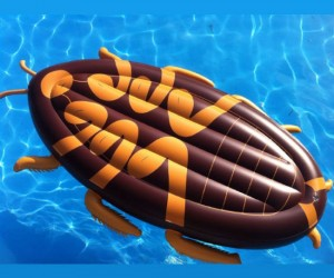 Put away the bug spray, this cockroach is just here to have fun in the sun!