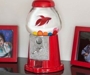 Gumball Machine Fishbowl – Just don't insert any quarters into this gumball machine…