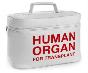 Human organ for transplant lunch cooler -  With Human Organ for Transplant written on the side of the tote, your lunch will be safe and ready to be transplanted into your […]