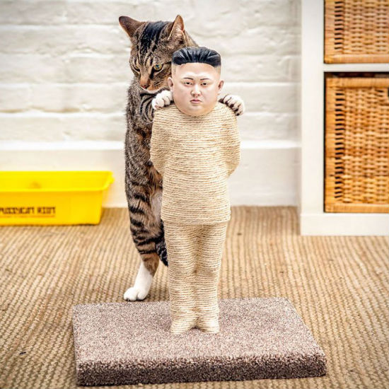 kim jung-un cat scratching post