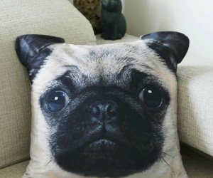 What the pug are you looking at? Who wouldn't want a dog's face on their pillow?