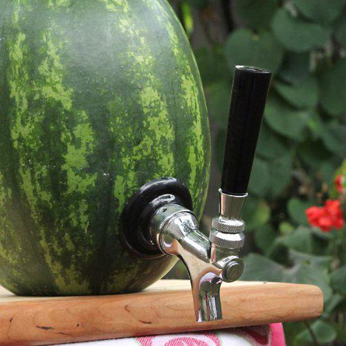 best-bbq-products-watermelon-tap-kit