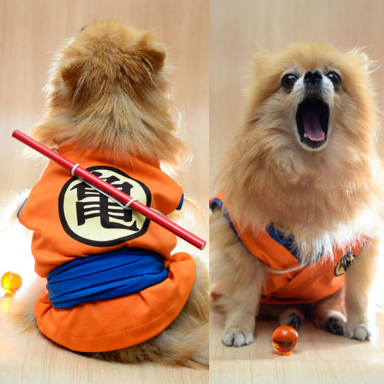 dbz-goku-dog-costume
