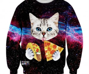 3 of our favorite things! Galaxy cats, tacos, and pizza!
