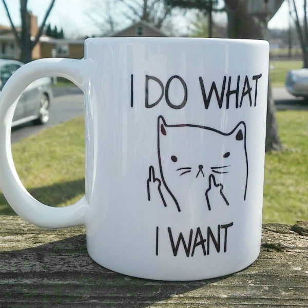 i-do-what-i-want-cat-middle-finger-mug-suatmm