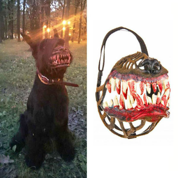 werewolf-dog-muzzle-suatmm-2