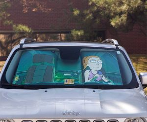 Rick and Morty Protect Summer Sunshade – Not a bad trade for spider peace